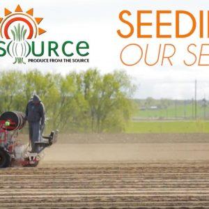 Seeding: Our Seeds