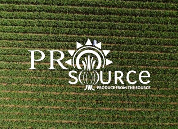 Prosource: Who are we?